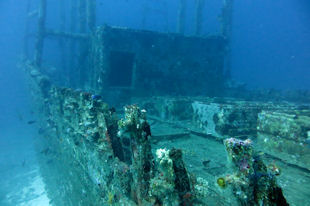 Wreckdiving Maldives
