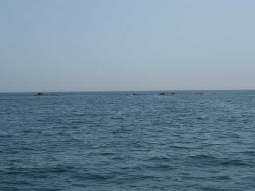 Sharm Rocks in Fujairah